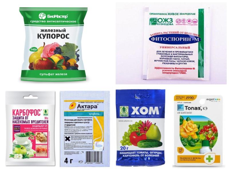 Препараты для осенней обработки сада от болезней и вредителей