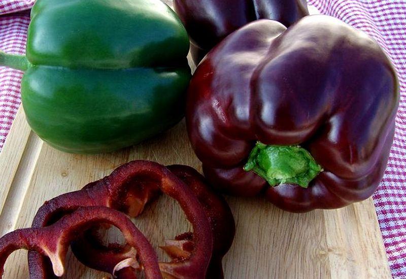 фиолетовый болгарский перец, описание, вкус